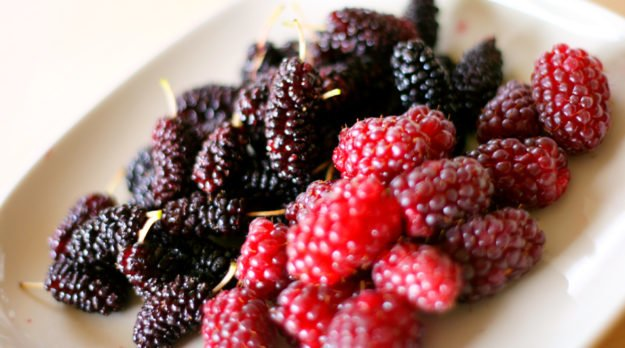 Foods That Improve Health And Increase Longevity