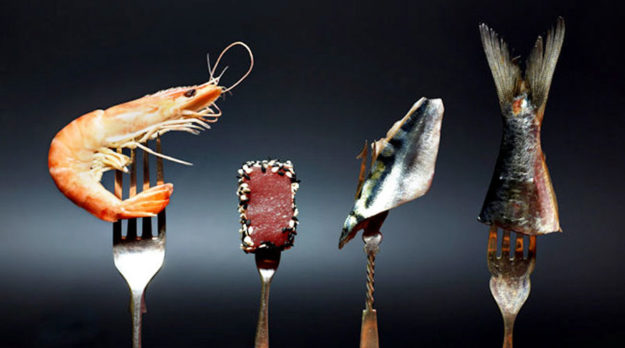 Massive Seafood Fraud Uncovered