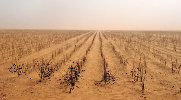 Nation's Drought To Persist And Worsen