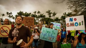 Worldwide Movement Against Monsanto Gaining Steam
