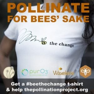 Save The Bees: Organic Bee The Change T-Shirt