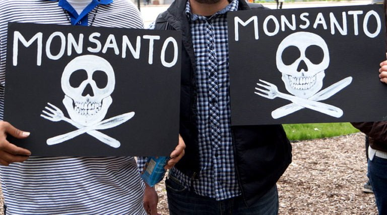 5 New Reasons Monsanto's 'Science' Doesn't Add Up
