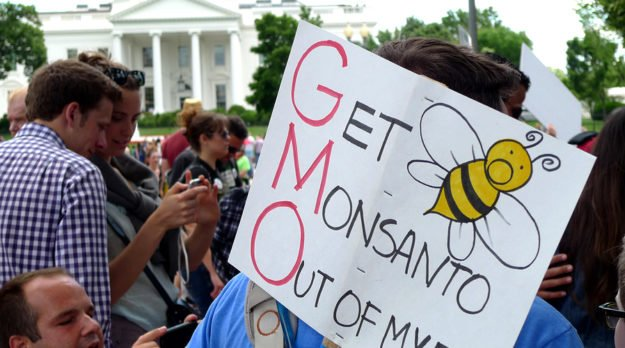 White House Launches Plan To Save The Bees
