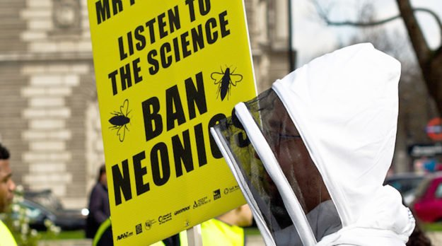 Were Plants In Your Garden Treated With Neonics?