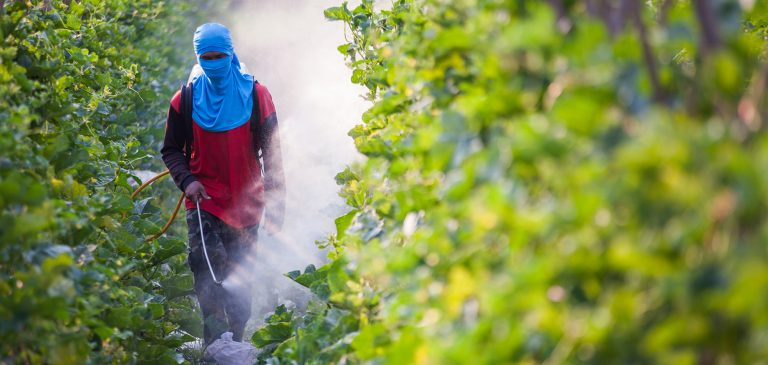 Top 10 Reasons To Stop Using Pesticides Now