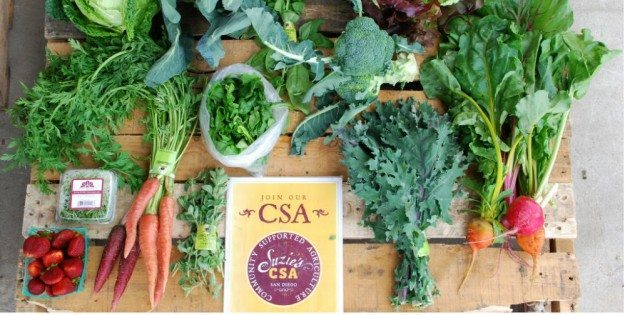 CSA's: A Way To Respond Intelligently To Climate Change