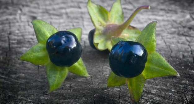 Avoid Nightshade Vegetables To Soothe Arthritis Pain