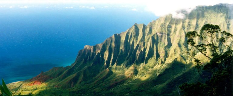 Pesticides in Paradise: Hawaii Health & Environment At Risk