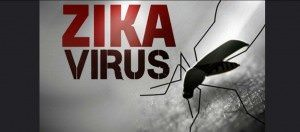 4 Things Mainstream Media Won't Tell You About Zika