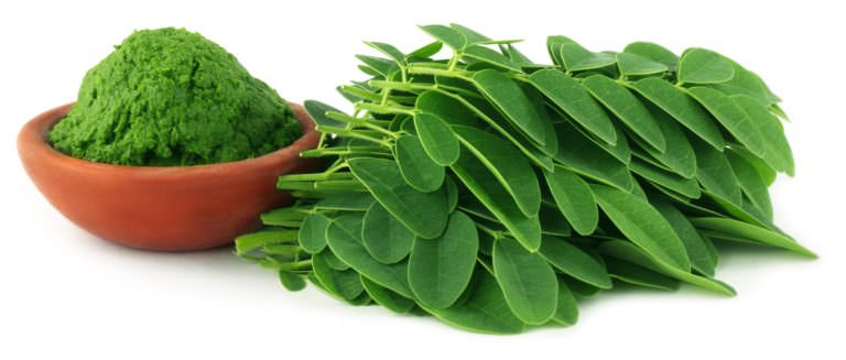 10 Reasons You Need To Incorporate Moringa Into Your Morning