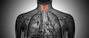 6 Strategies for Improving Thyroid Function