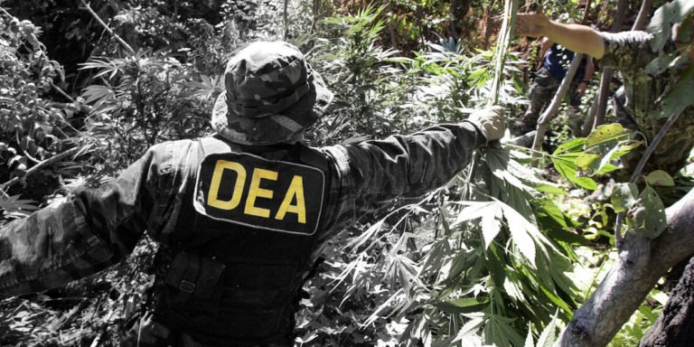 DEA's Attempt To Classify CBD As Schedule 1 Drug Is Likely Illegal