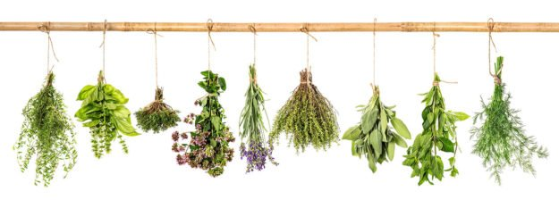 10 Fantastic Herbs For Migraine Relief