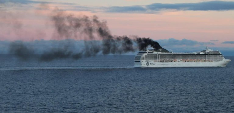 6 Ways Cruise Ships Harm The Planet And All Life On It