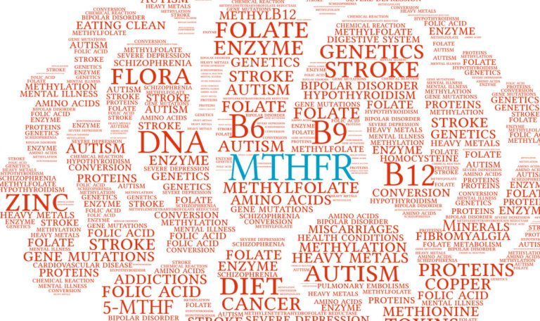 The MTHFR Gene And Methylation – What's All the Fuss?