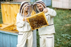 Honey Producing Programs Praised As Possible Natural Remedy For PTSD